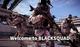 글로벌 시장 겨냥한 '블랙스쿼드'...초반부터 뚜렷한 성과로 주목