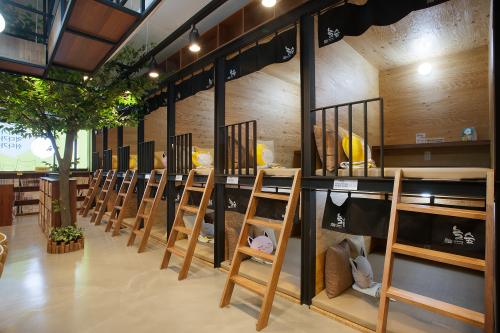 만화카페 창업브랜드 놀숲, 전국 가맹점 3곳 그랜드 오픈