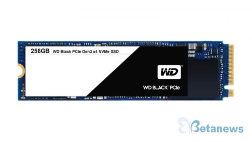 최고의 1인 크리에이터 꿈꾸는 자, WD SSD를 주목하라