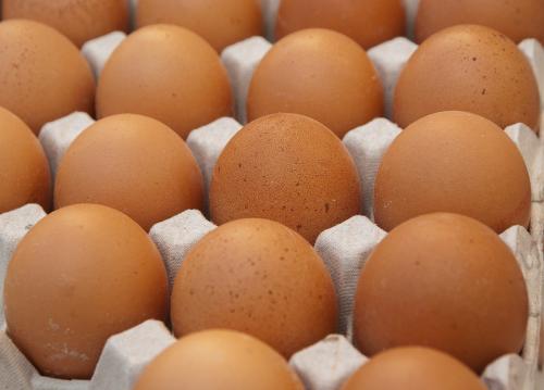 신학기 맞아 수요증가… 국내산 계란 값 '꿈틀'